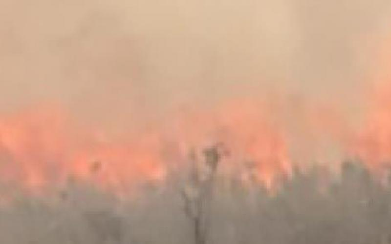 Approximately 600 Acres Burnt Over The Weekend During Accidental Grass Fires
